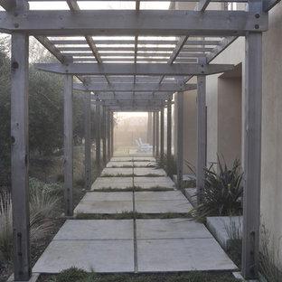 Ispirazione per un patio o portico design di medie dimensioni e nel cortile laterale con una pergola e lastre di cemento
