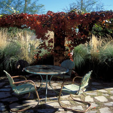Eclectic Patio by Mountain States Wholesale Nursery
