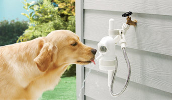 Water Fountain for Dogs