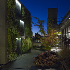 Modern Patio by Tinmouth Chang Architects