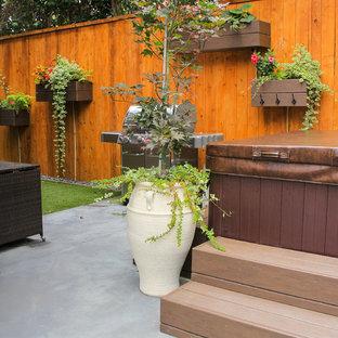 Idéer för en liten eklektisk uteplats på baksidan av huset, med en vertikal trädgård och betongplatta
