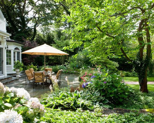 Patio Shade Plants Home Design Ideas Pictures Remodel