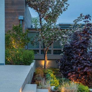 Idee per un grande patio o portico minimalista dietro casa con un focolare, pavimentazioni in cemento e nessuna copertura