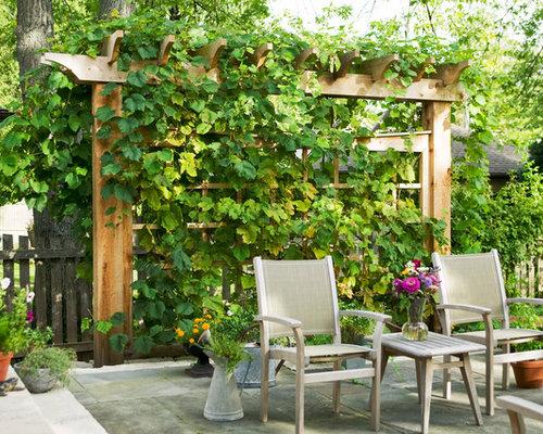 Grape Vine Trellis Ideas Home Design Ideas, Pictures, Remodel and Decor