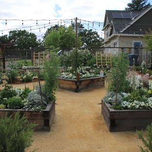 Expansive country backyard patio in San Francisco with a vegetable garden, decomposed granite and no cover.