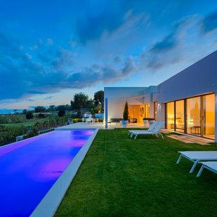Ejemplo de casa de la piscina y piscina alargada, actual, grande, rectangular