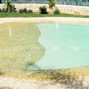 アリカンテの中サイズのトロピカルスタイルのおしゃれな自然ろ過プールの写真