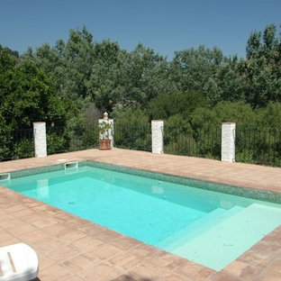 Inspiration for a small country rectangular lap pool in Other with tile.