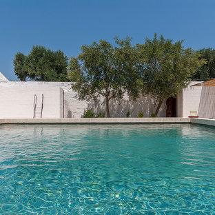 Idee per una grande piscina mediterranea rettangolare dietro casa