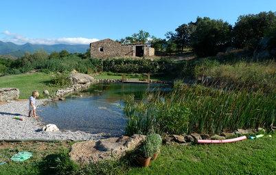 Comment choisir entre baignade naturelle et piscine écologique ?