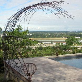 Inspiration pour une grand piscine sur une terrasse en bois arrière design rectangle.