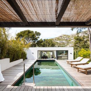 Cette photo montre une piscine arrière tendance rectangle.