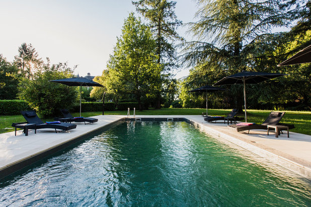 Contemporary Pool by A3Design