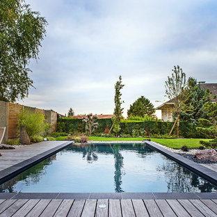 Cette image montre une piscine sur une terrasse en bois arrière traditionnelle rectangle et de taille moyenne.