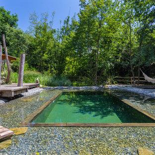 Foto de piscina natural, campestre, grande, a medida, en patio trasero, con gravilla