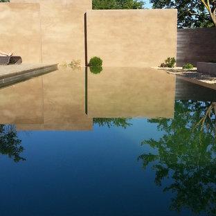 Exemple d'une grand piscine sur une terrasse en bois à débordement tendance rectangle.