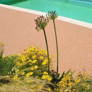 Ejemplo de piscina natural, mediterránea, grande, rectangular, en patio delantero, con granito descompuesto