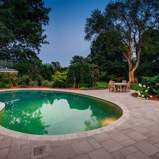 Diseño de piscina contemporánea tipo riñón