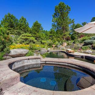 デンバーのアジアンスタイルのおしゃれな露天風呂・スパの写真