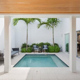 Modelo de piscina natural, contemporánea, de tamaño medio, rectangular, en patio lateral, con suelo de hormigón estampado