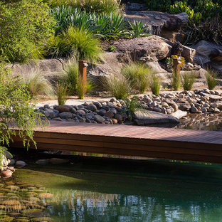 Diseño de piscina natural, minimalista, extra grande, a medida, en patio trasero, con granito descompuesto