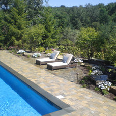 Contemporary Pool by Signature Outdoor Concepts