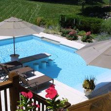 Traditional Pool by Liquid Assets Pools, Inc.