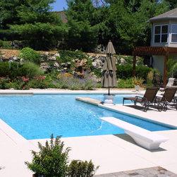 St Louis Traditional L Shape Shape Swimming Pool Design