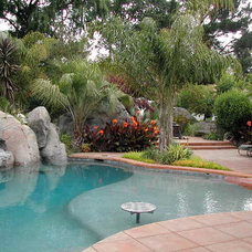 Tropical Pool by Outdoor Republic