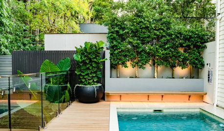 14 Poolside Planting Ideas as We Head Into Swimming Season
