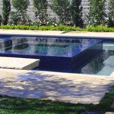 Mediterranean Pool by AMS Landscape Design Studios, Inc.