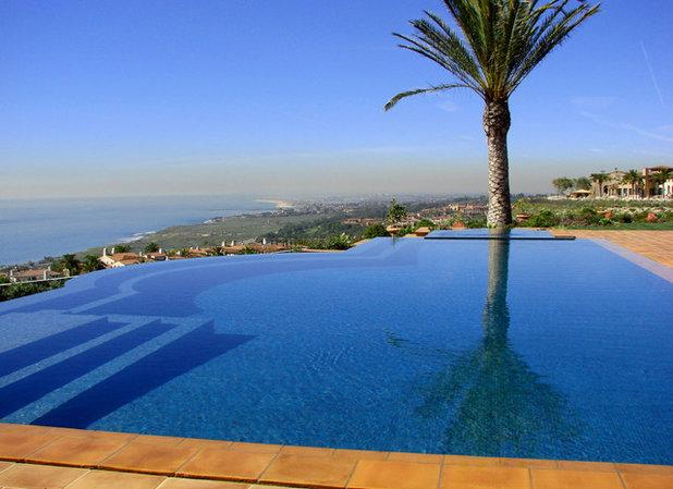 Mediterran Pools by AMS Landscape Design Studios, Inc.