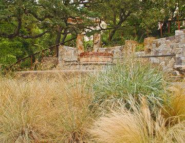 An East Bay Garden