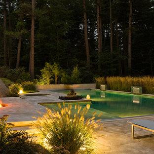 Diseño de piscinas y jacuzzis alargados, contemporáneos, grandes, rectangulares, en patio trasero, con losas de hormigón