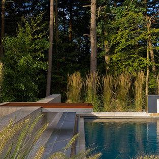 Ispirazione per una grande piscina design rettangolare dietro casa con lastre di cemento e fontane