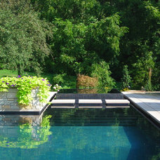 Contemporary Pool by Apex Landscape