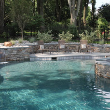 Traditional Pool by Aqua Bello Designs