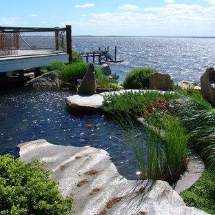 Modelo de piscina con fuente natural, de estilo zen, grande, a medida, en patio lateral, con gravilla