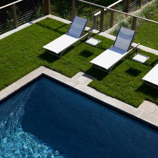 Diseño de piscina alargada, contemporánea, grande, rectangular, en patio trasero, con privacidad