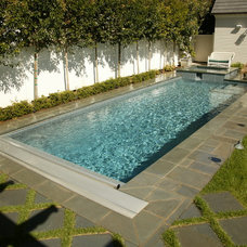 Traditional Pool by Symphony Pools Inc