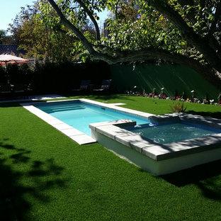Imagen de piscinas y jacuzzis naturales, minimalistas, pequeños, rectangulares, en patio trasero, con adoquines de hormigón