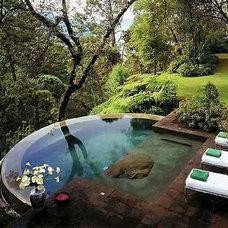 Traditional Pool Backyard Hottub