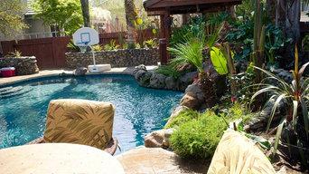 Backyard Landscape Renovation
