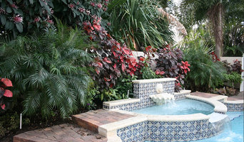 Backyard Oasis - Palm Beach