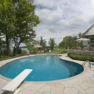 Example of a classic kidney-shaped pool design in Minneapolis