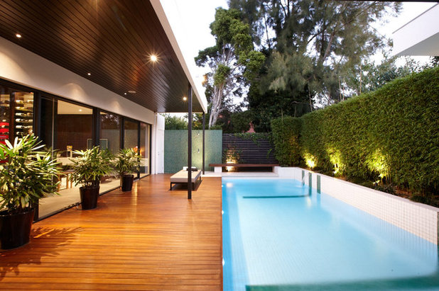 Contemporary Swimming Pool by C.O.S Design