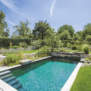 Inspiration for a large contemporary backyard stone and rectangular pool remodel in Munich