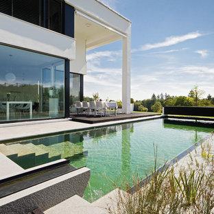 Mittelgroßer Moderner Schwimmteich hinter dem Haus in rechteckiger Form mit Betonplatten in München
