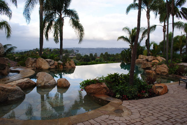 Tropical Pool by Nature Designs Landscaping