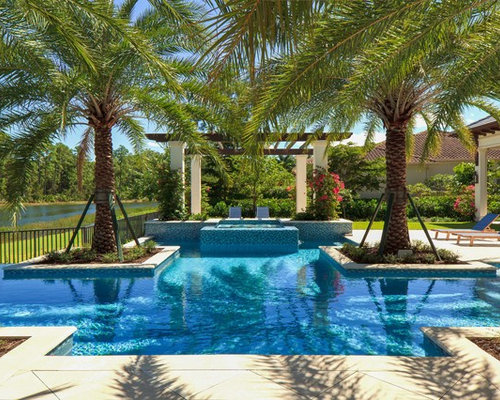 Palm Tree Backyards | Houzz on Palm Tree Backyard Ideas id=13085